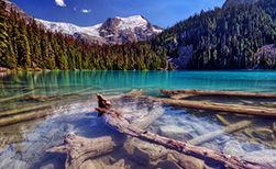 Kanada Urlaub Nationalpark See, Holz, Bäume
