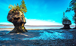 Fundy National Park Kanada